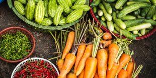 Une bonne alternative plus saine : la nourriture biologique
