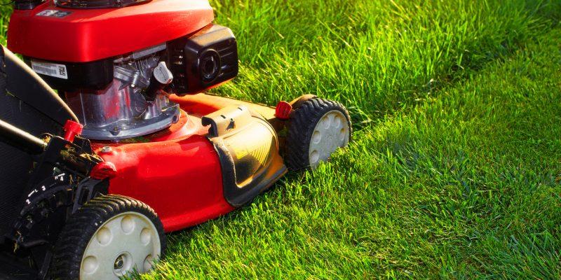 Avec quoi tondre la pelouse ?