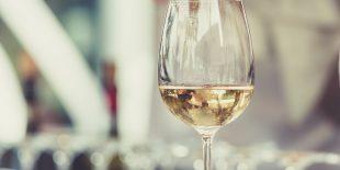 Guide : les cépages du vin blanc du Jura