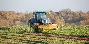 Les productions agricoles lorraines
