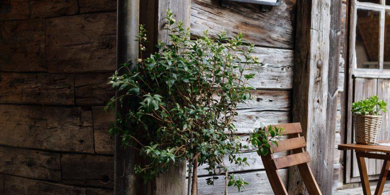 Les avantages et les défauts d'un abri de jardin en bois